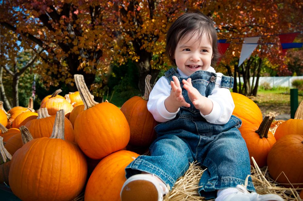 sabie_pumpkins-7