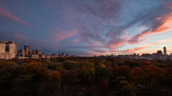 Central Park - Dawn